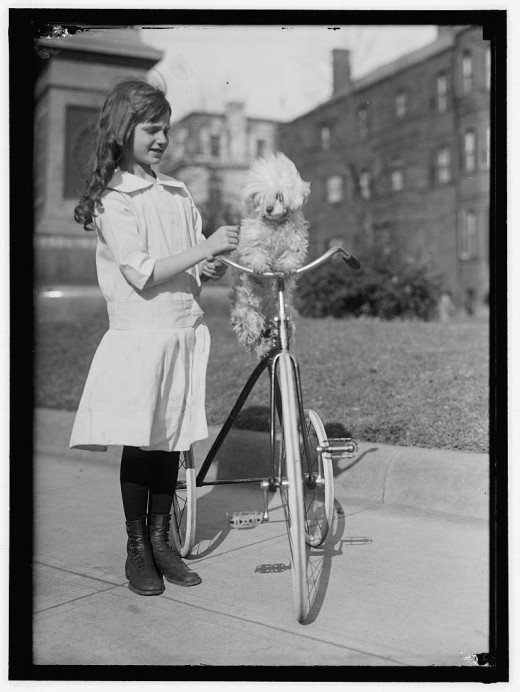 edwardianera:  Girl, her tricycle and her dog, 1911
