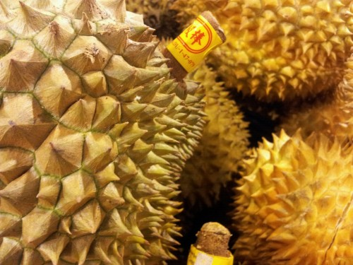 Durian at Park n Shop, Guangzhou.