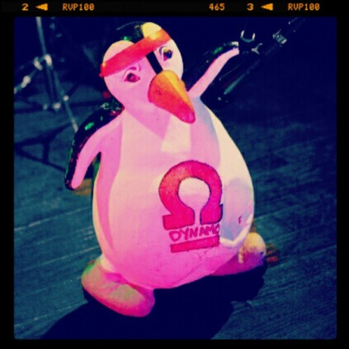 Dyna-pingu on stage @ the tavern #bangor #pingu #dynamo #dynamoband #mascot #band #nimusic #music #ni #tweetni #rock #nibands #roll www.MySpace.com/dynamoband www.Facebook.com/dynamoband (Taken with instagram)