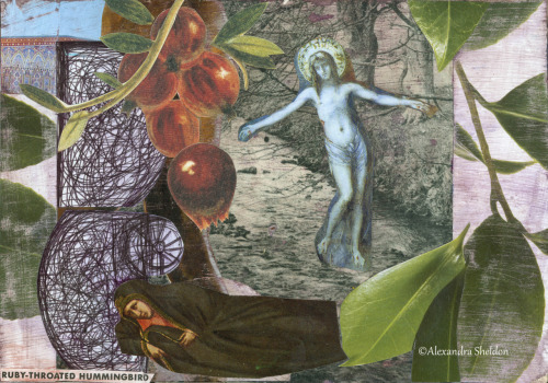 Making collages can be a form of healing or prayer. It can be a way of doing something when you feel helpless. I lead workshops and classes on this method of collage. Contact me to learn more. www.alexandrashedon.com