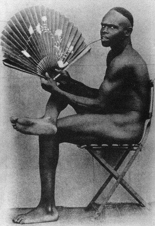 androphilia:  Algeria, The Negro With A Fan, French Colonial Photograph, Circa 1900