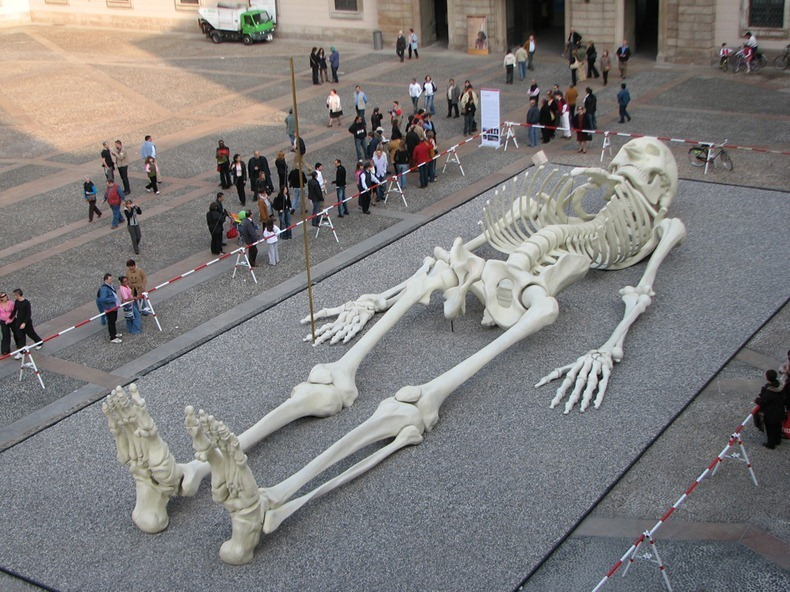 wildandpeaceful:  Calamita Cosmica, 28 meter long sculpture by Italian artist Gino De Dominicis (via Amusing Planet)