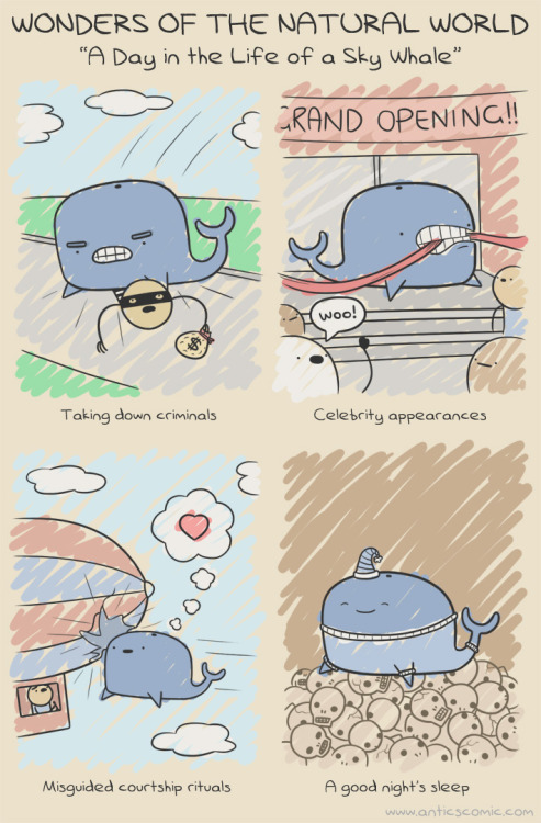 """A day in the life of a sky whale."""