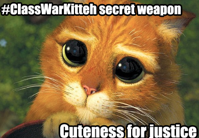 My secret weapon is cuteness!  You shall not defeat the kitteh!