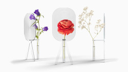 fastcodesign:  Big Bloom, a magnifying vase that supersizes your flowers