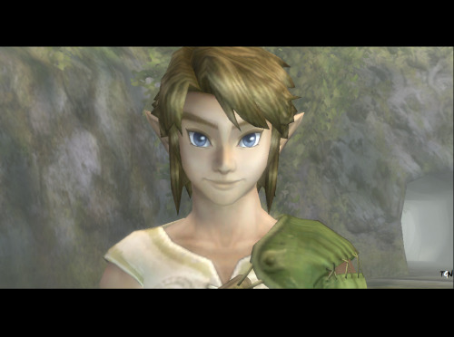 Happy Link! :) from The Legend of Zelda: Twilight Princess TGN