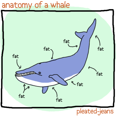 Unscientific Diagrams Featuring the Anatomy of Sea Life