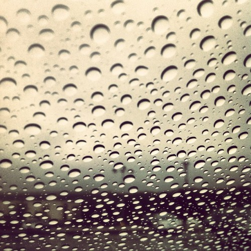 #rainydayz #water #borophyll  (Taken with instagram)