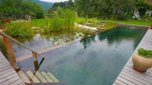 I want a pool like this, don't you? / Quiero una alberca así, ¿ustedes no?