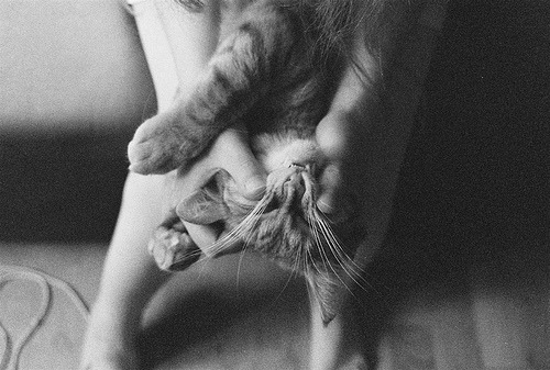 black-and-white:  (by Lina Scheynius)