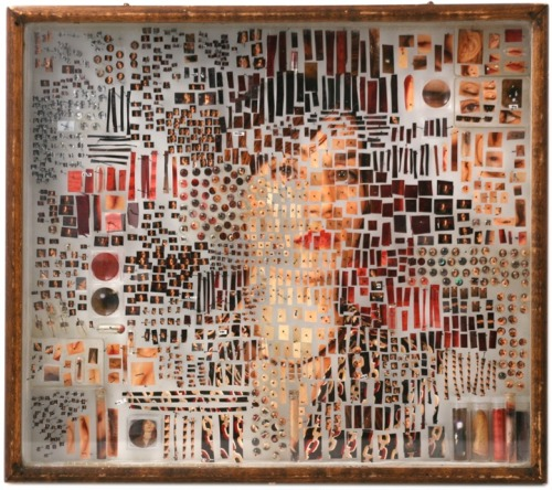 hahamagartconnect:  DISSECTED PORTRAITS New York-based Artist, Michael Mapes takes portraits, dissects them and then places them into specimen boxes, creating this curiously scientific approach to beauty & preservation. You can see this one and others like it at his virtual lab at room62.com.