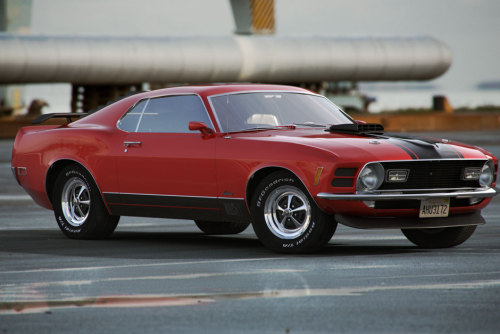 1970 Ford Mustang Mach 1, probably my favorite car of all time. I used to own one of these bad boys which was my motivation for making it in 3D. Brought back a lot of good memories.  Wallpapers on my website: http://www.characterink.com/2012/05/15/mustang-mach-1/