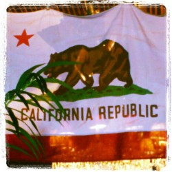 #California #Republic / Bandera de la República de California / #flag #usa #white #red #bear #instagram #igers. #nation #star #stripe #free #freedom #la #hollywood (Tomada con instagram)
