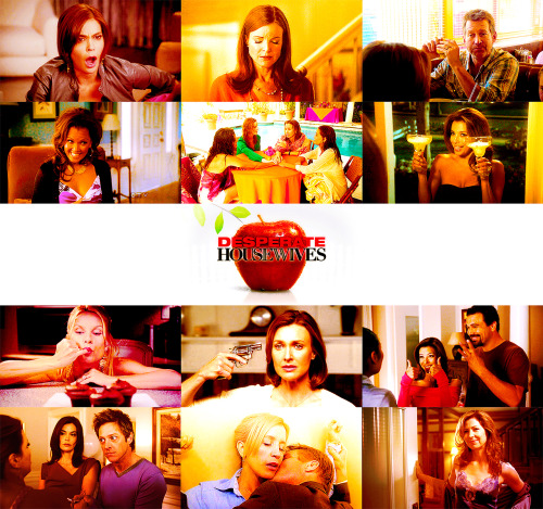 kmoleary:  RIP: Desperate HousewivesOctober 3, 2004 - May 13, 2012  Trust is a fragile thing. Once earned, it affords us tremendous freedom. But once trust is lost, it can be impossible to recover. Of course the truth is, we never know who we can trust. Those we're closest to can betray us, and total strangers can come to our rescue. In the end, most people decide to trust only themselves. It really is the simplest way to keep from getting burned.