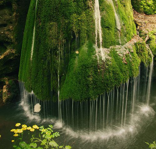 Moss Waterfall, Romania photo via tryp