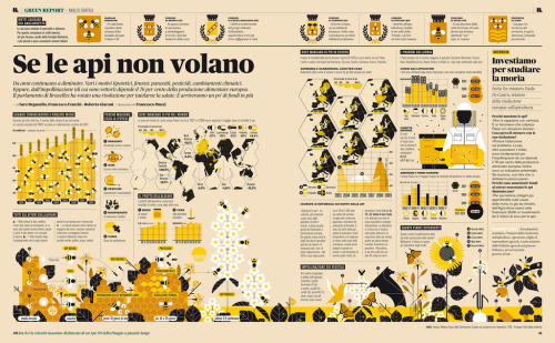 Infographics about bees for IL- Intelligence in lifetime by Francesco Franchi. Francesco Franchi is an italian graphic designer (also journalist since 2010) and working as art director for IL- Intelligence in lifetime monthly magasine.