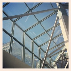 #architecture #portland #glass #sky #blue #instagood #instaaddict #urbanlandscapes #pdx #rosecity  (Taken with instagram)