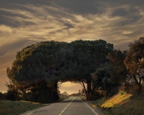 a road in portugal