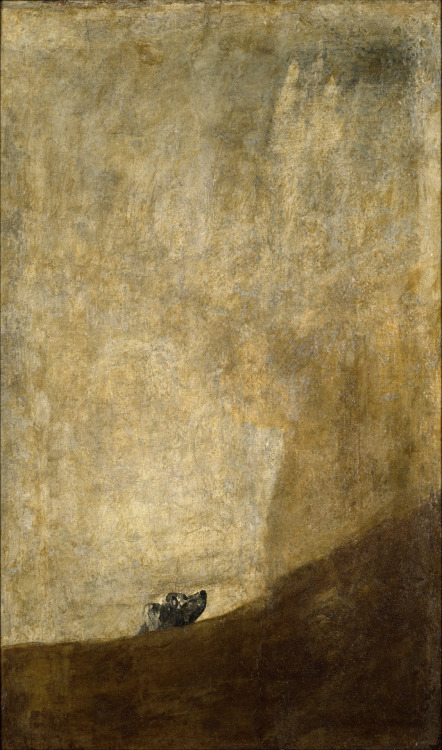 virin:  fckyeaharthistory:  Francisco Goya - The Dog, 1819-23. Oil on canvas