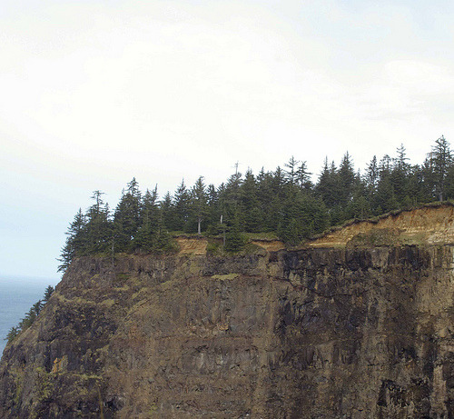 Cliffside (Cape Meares, Or)
