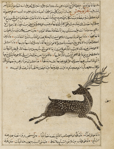Folio from Aja'ib al-makhluqat (Wonders of Creation) by al-Qazvini, 15th Century.