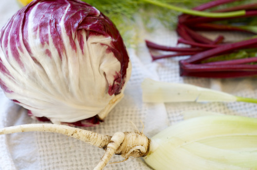 washing vegetables for fennel radicchio slaw