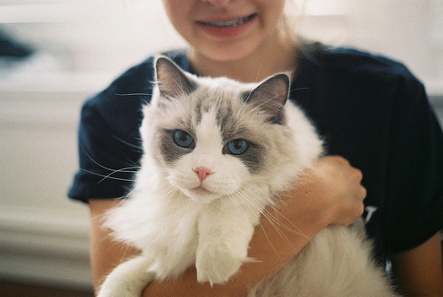 amatterofcourse:  (by Sarah V. Elston)