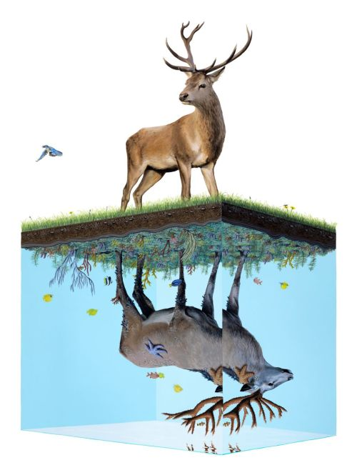 "laughingsquid:  Interview: Josh Keyes – ""Above and Below"" @ Joseph Gross Gallery"