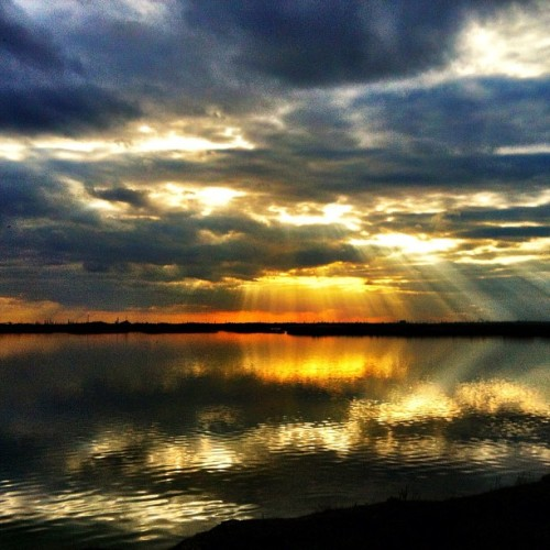 Cliffe Marshes. #sun #sunset #sky #skyporn #clouds #cloudporn #lake #water #medway #kent #uk  (Taken with instagram)