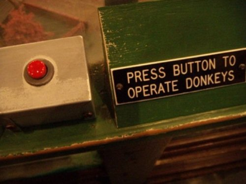 Press Button to Operate Donkeys Before you press that button you best be sure you're ready to wield that kind of power.