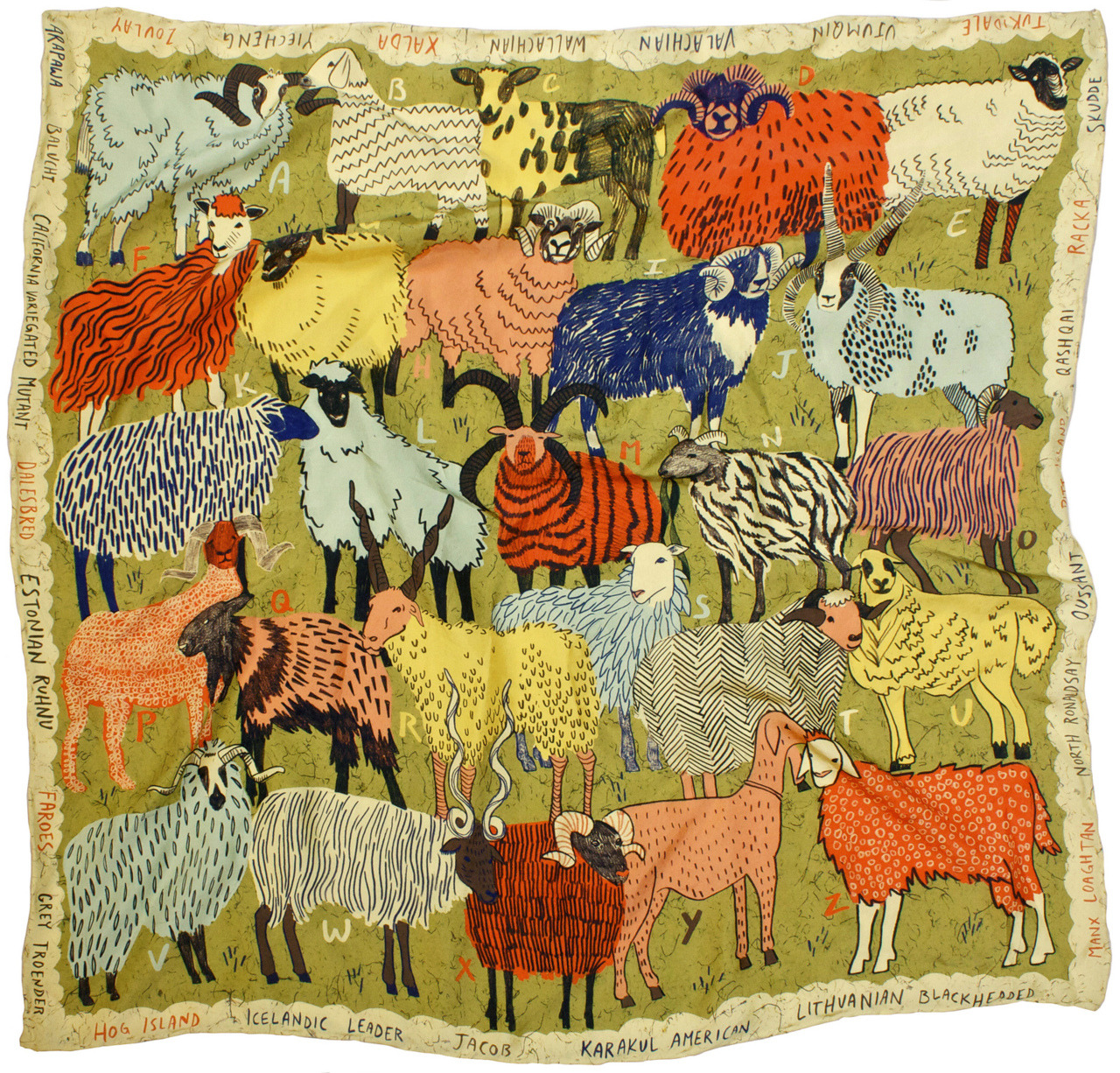 A-Z of Rare, Wool-production Sheep Breeds-part of a series of silk scarves as info-graphics
