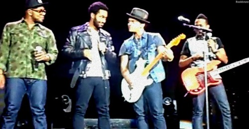 roohbrunz:  Phred and Bruno .. This is a eye contact !