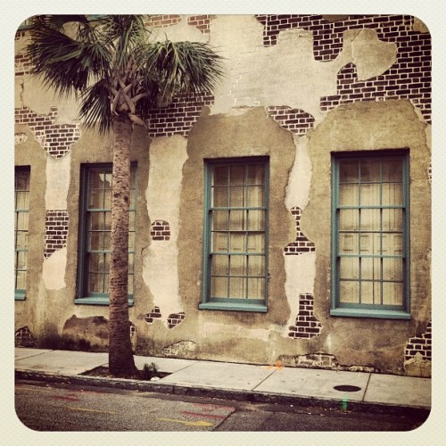 Streets of Charleston (Taken with instagram)