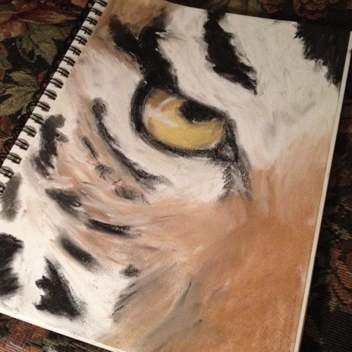 celebr8wewill:  Second pastel drawing. #nofilter #tiger #art (Taken with instagram)  Looks so good