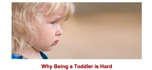 "mammalingo:  A long, long time ago, I wrote an essay on toddlers. I first had the idea for it when my now four year old was about 18 months. Well, my third kiddo is about one and a half now. And, it feels like deja vu. If you missed it the first time or just really have nothing better to do, here's my old essay for Babble: ""One morning, my then one-and-a-half-year-old son unlocked the child-safety latch of our bottom bathroom drawer. Upon finding my makeup, he began breathing heavily with excitement and staggering around. What a haul! What loot! Imagine his disappointment when, just as he was about to pry the shiny cap off a red lipstick, I picked him up and carried him out of the bathroom. I didn't congratulate him on his discovery. I didn't point him in the direction of the hallway's white walls and say, ""My home is your canvas. Go forth and create."" Instead, I ruined everything. Before I had children, when I'd go to the grocery store and see a little kid in the cereal aisle screaming and crying, I'd shake my head. Why was it that every time I saw a toddler, he or she was throwing some kind of fit? What could be so difficult about spending the day playing, napping, and eating? Now, after living among their kind, I should apologize. Not to you, but to them. Here's the sad truth: for toddlers, the world is a rough place full of squelched mysteries, restrained freedoms, and nonsensical commands. I think I'd rather be fourteen again than be a toddler."" Read more…  Putting oneself in another's shoes."