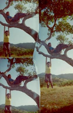 Just hanging out.  Himontagon Hills (Morning Hills), Loay, Bohol, Philippines Disderi 3-lens Robot Camera by Melancholik