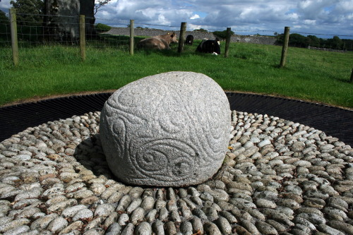 "miss-mary-quite-contrary:  The Castlestrange stone is located in the grounds of ""Castlestrange House"" near Athleague in County Roscommon. It is a granite boulder decorated with flowing spirals in the La Tène style, dating from the Iron Age period between 500 BC and 100 AD. It is believed that there was a strong Continental influence in Ireland at the time, which the carver was imitating. Only three other stones of this type have been found in Ireland, of which the Turoe stone in County Galway is the best known. The use of the stones is not known but it is assumed they served some religious or ritual purpose. The stone is a protected National Monument."