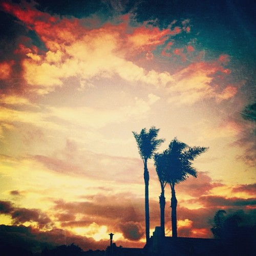 If only this were every day… #sunset #color #lookingup #palmtrees #sky #skyline #lacosta #carlsbad #sandiego #california #picfx #sierra #sierra_sandwich #ss_potd #lux #latergram  (Taken with instagram)