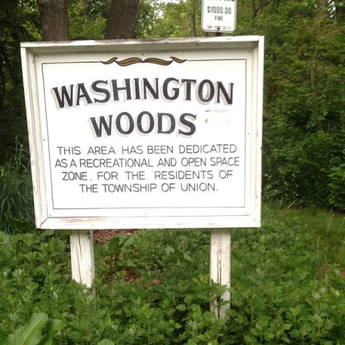 #washingtonwoods #weedspot (Taken with Instagram at Washington Woods)