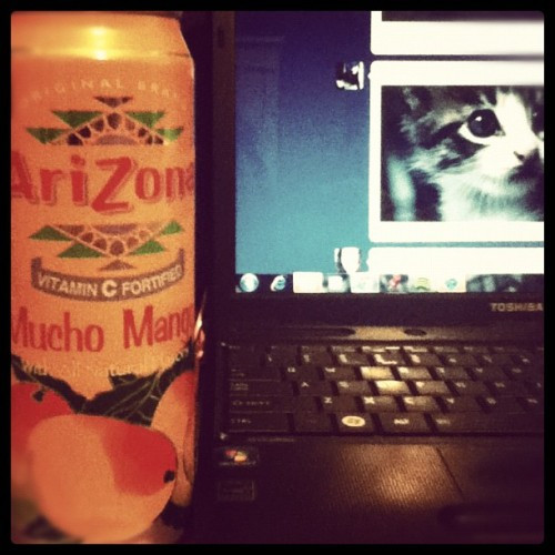 The life. #ArizonaTea #tumblr