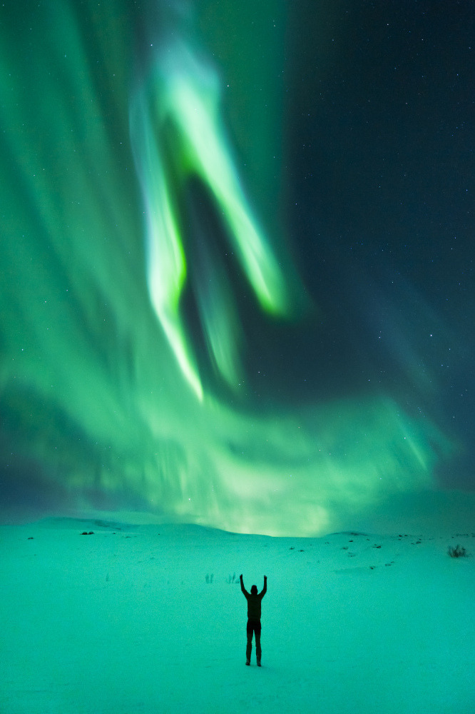 Northern Lights Look Spectacular In Norway(PHOTOS) - Capitalbay News