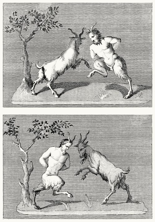 oldbookillustrations:  Satyrs fighting billy goats Tommaso Piroli (engraver), from Antiquités d'Herculanum, published by Francesco and Pietro Piranesi, Paris, 1804. (Source: archive.org)