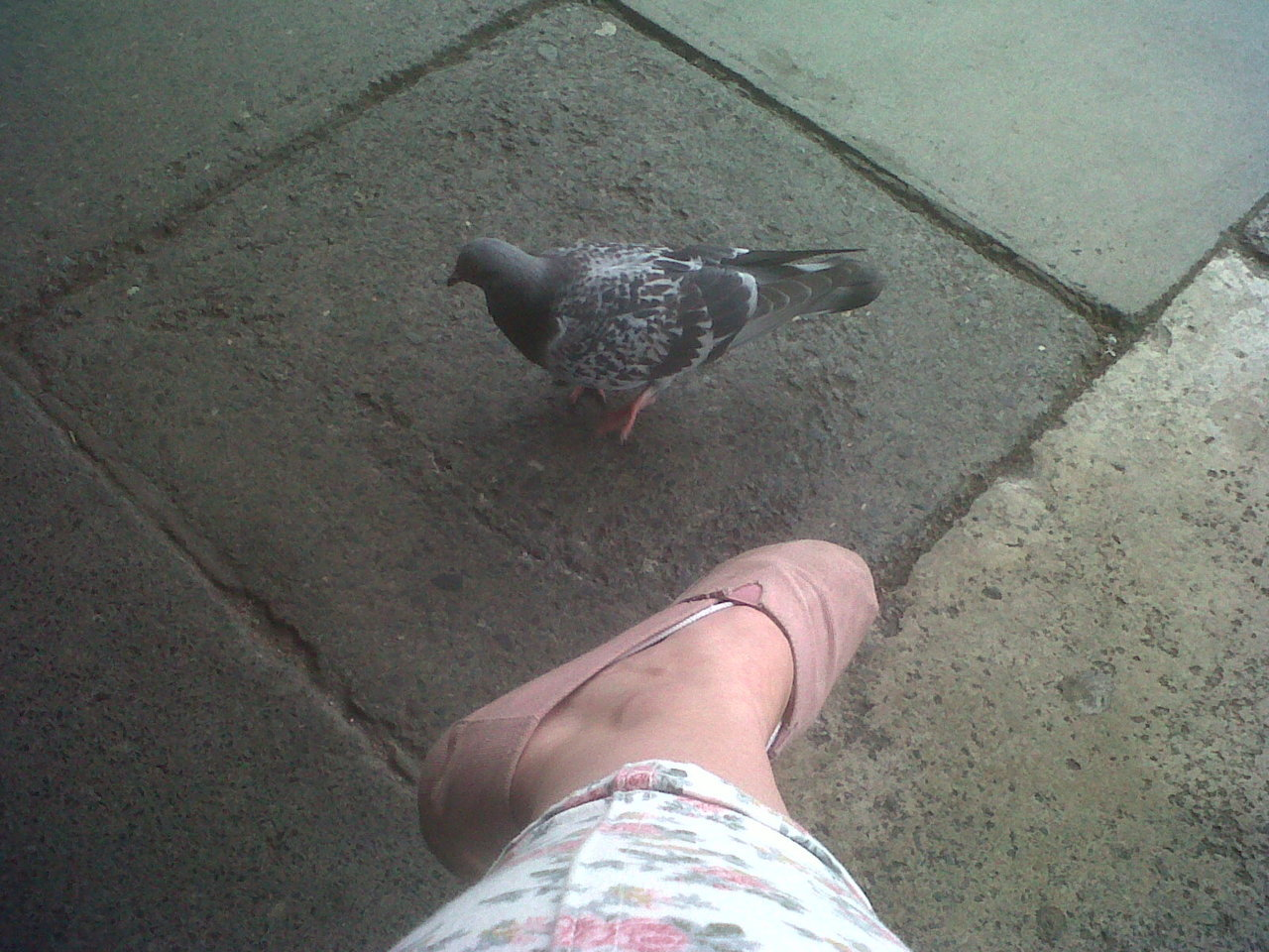You sir are too close to my shoe