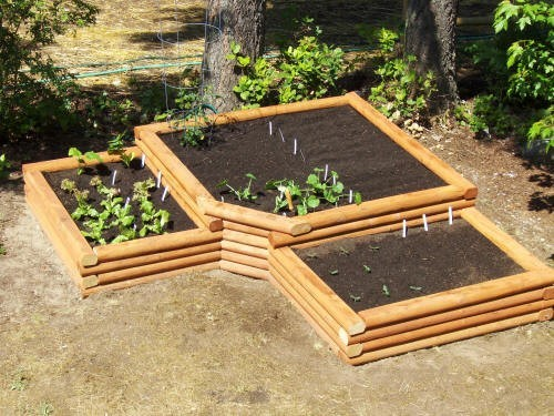 Raised garden bed. Source: http://pinterest.com/meavedumas/