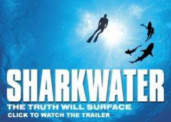 SHARKWATER - The Truth Will Surface