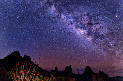More Big Bend Milky Way by dfikar1 on Flickr.