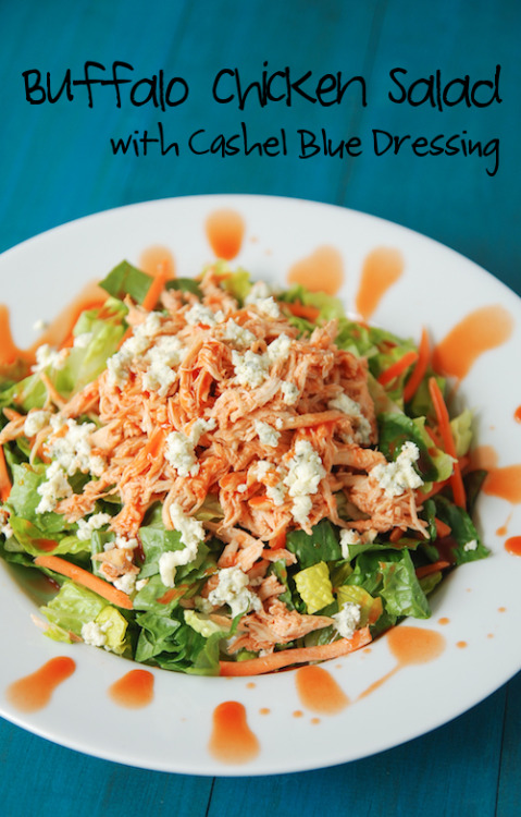 gastrogirl:  buffalo chicken salad with cashel blue dressing.