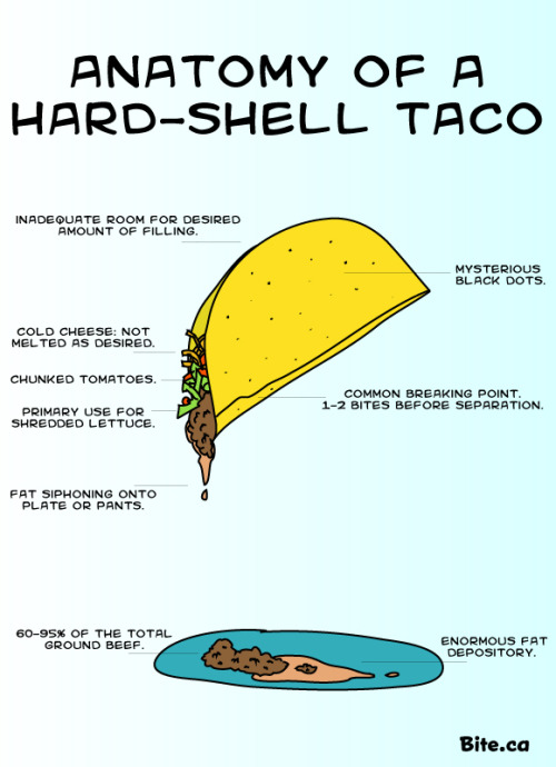 """Anatomy of a Hard-Shell Taco"""