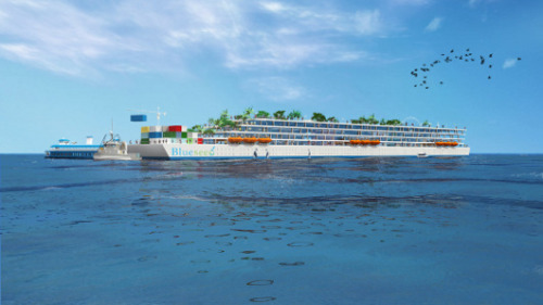 PayPal co-founder funds floating city for entrepreneursBlueseed would allow innovators from outside the U.S. to tap into Silicon Valley without worrying about visa issues.