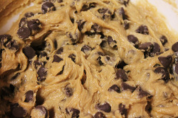 prettygirlfood:  Chocolate Chip Cookie Dough